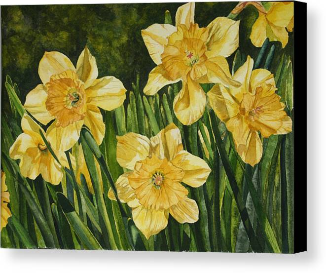 Flower Canvas Print featuring the painting Sunshine Kisses by Helen Shideler