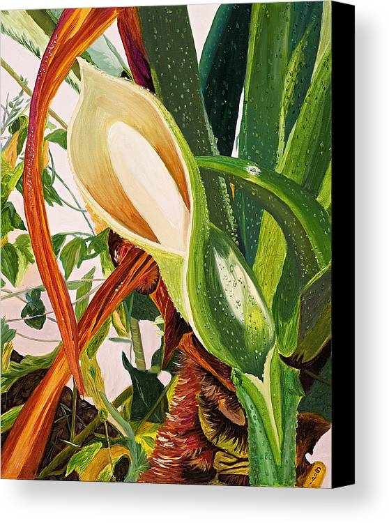 Floral Canvas Print featuring the painting Blooming Philodendron Tree After Rain by Sodi Griffin