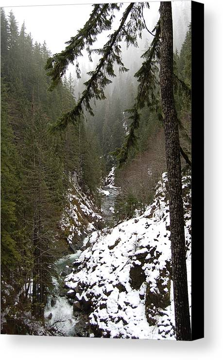 Mountain Canvas Print featuring the photograph Winter by J D Banks