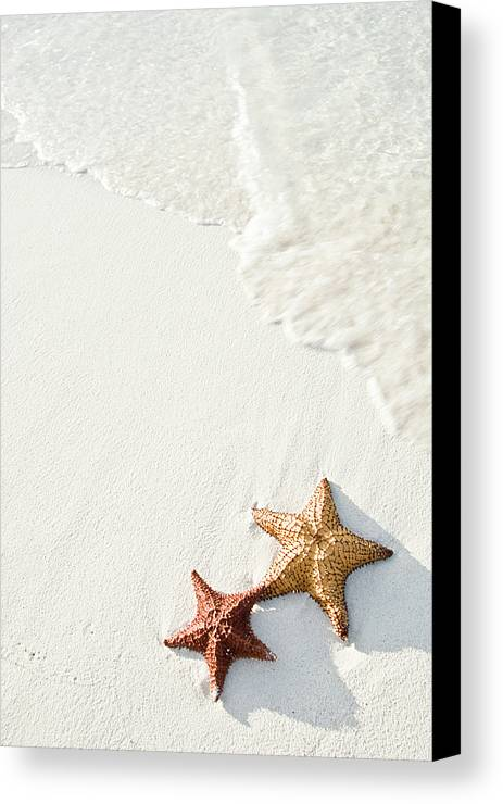 Vertical Canvas Print featuring the photograph Starfish On Tropical Beach by Mehmed Zelkovic