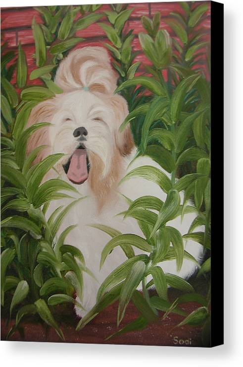 Dog Canvas Print featuring the painting Pflower Nap by Sodi Griffin