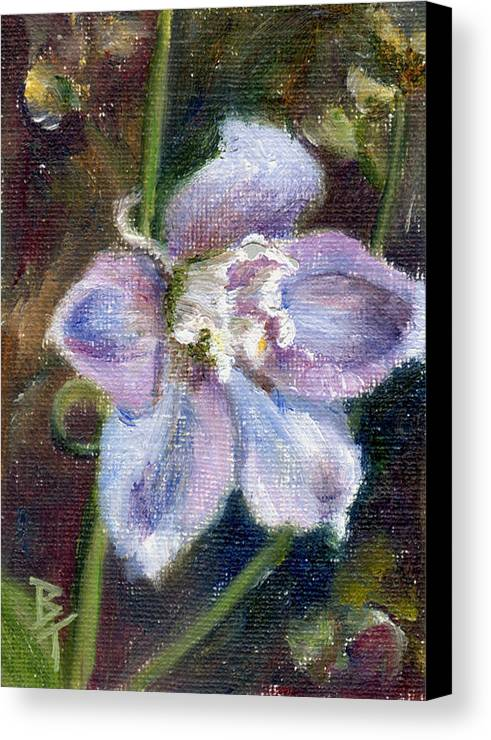 Flower Canvas Print featuring the painting Sweet Bloom Aceo by Brenda Thour