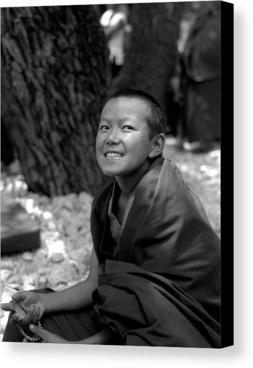 Black And White Canvas Print featuring the photograph Lama Baby by Lian Wang