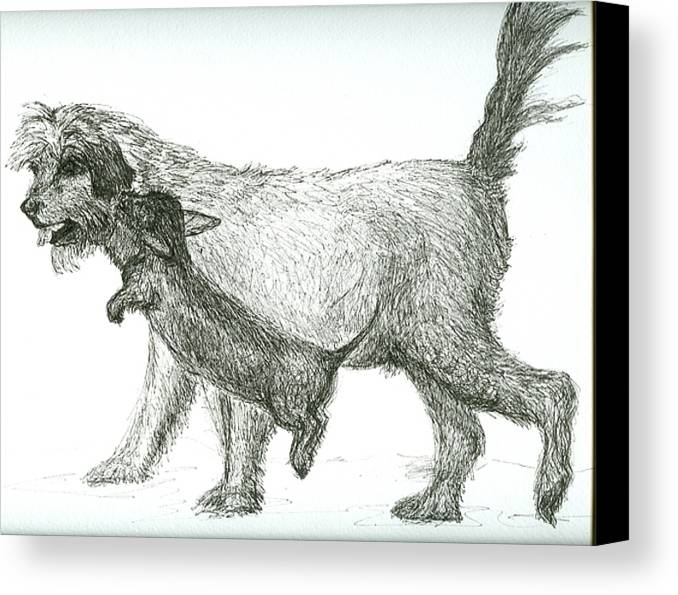 Dogs Canvas Print featuring the drawing Best Friends by Laura Johnson