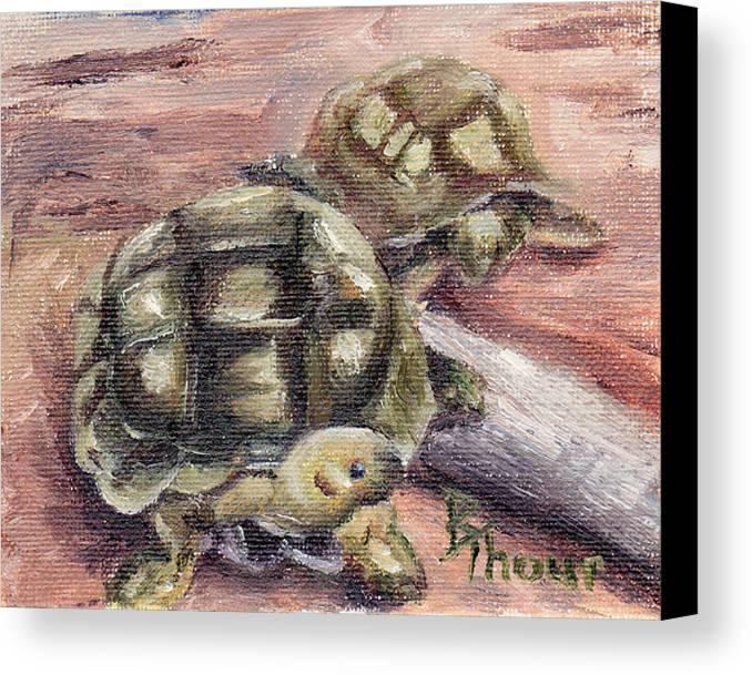 Turtle Canvas Print featuring the painting Turtle Friends by Brenda Thour
