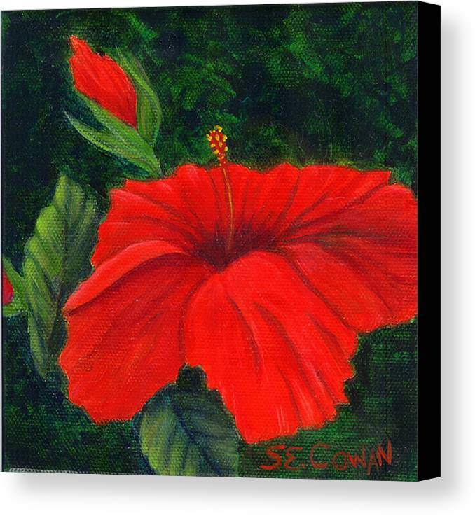 Floral Canvas Print featuring the painting Red Hibiscus by SueEllen Cowan