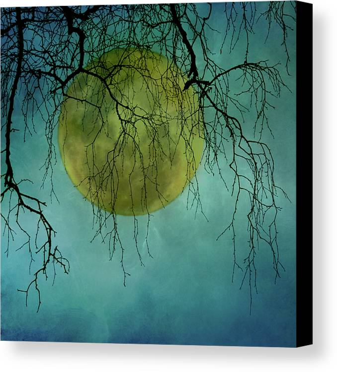 Square Canvas Print featuring the photograph Full Moon by Jill Ferry