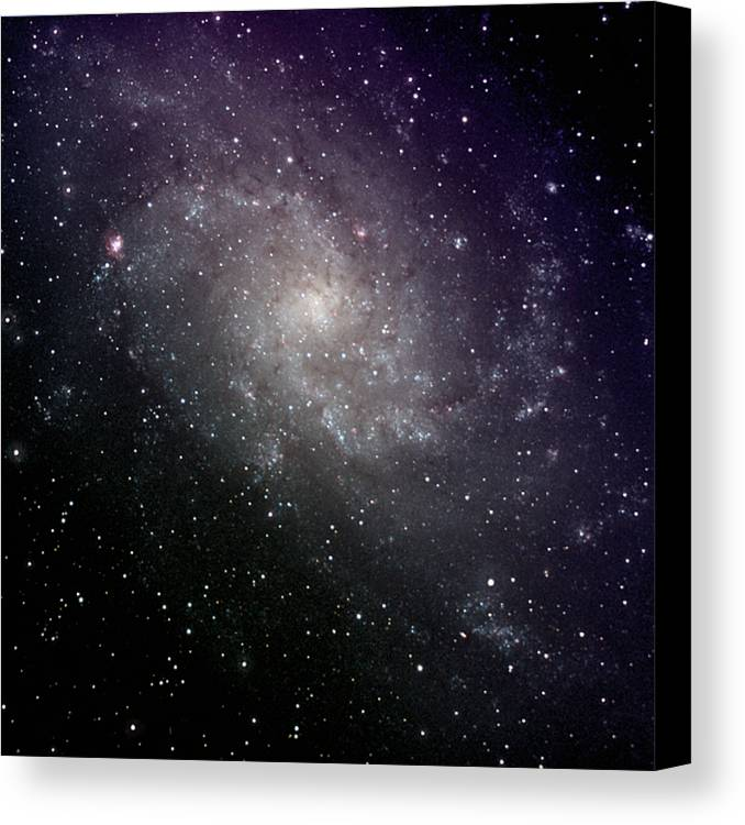 Square Canvas Print featuring the photograph Triangulum Galaxy by A. V. Ley