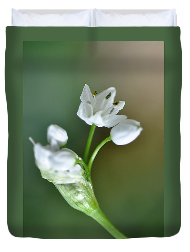Lachish Duvet Cover featuring the photograph White Blossom 3 by Dubi Roman