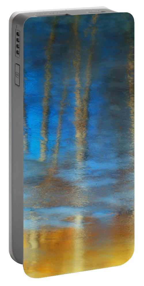Ice Portable Battery Charger featuring the photograph Ice Reflections by Tara Turner