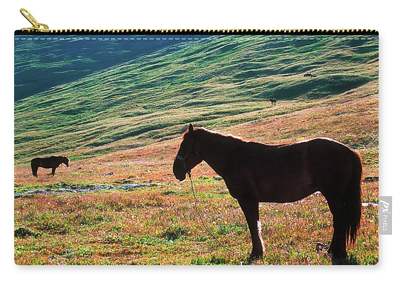 Alone Carry-all Pouch featuring the photograph Altay by Konstantin Dikovsky