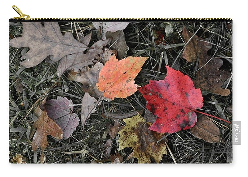 Autumn Carry-all Pouch featuring the photograph Leaves Are Falling by JAMART Photography