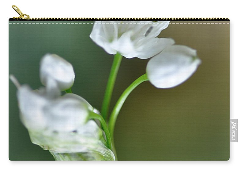 Lachish Carry-all Pouch featuring the photograph White Blossom 3 by Dubi Roman