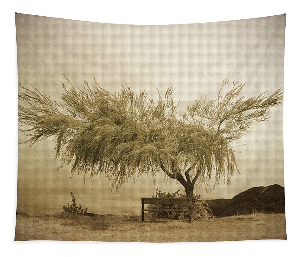 Tree Tapestry featuring the photograph A Sky The Colour Of Memory by Tara Turner