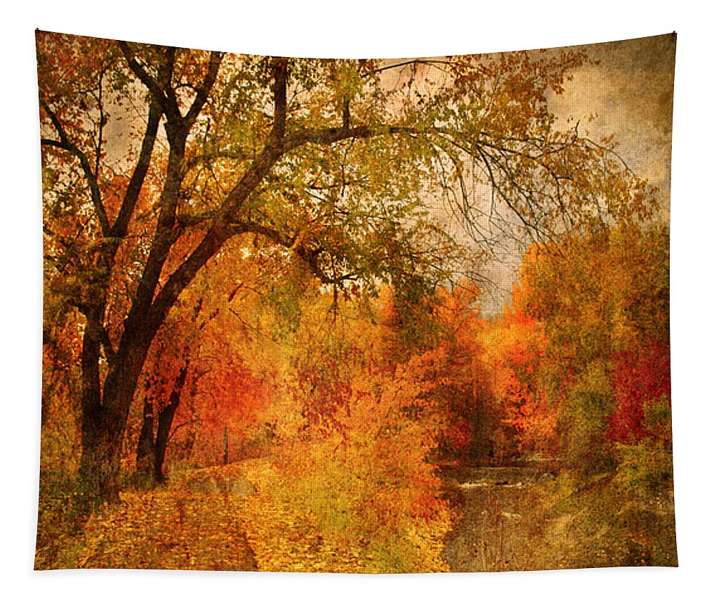 Pathway Tapestry featuring the photograph Autumn Pathways by Tara Turner
