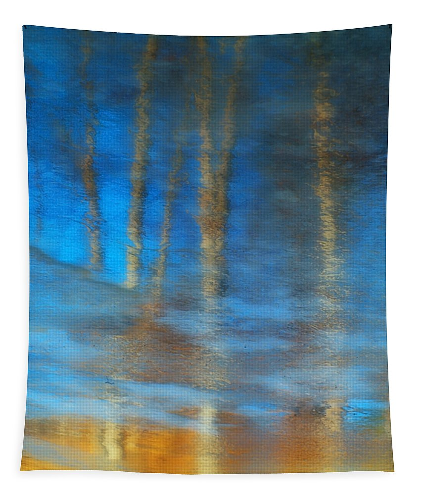 Ice Tapestry featuring the photograph Ice Reflections by Tara Turner