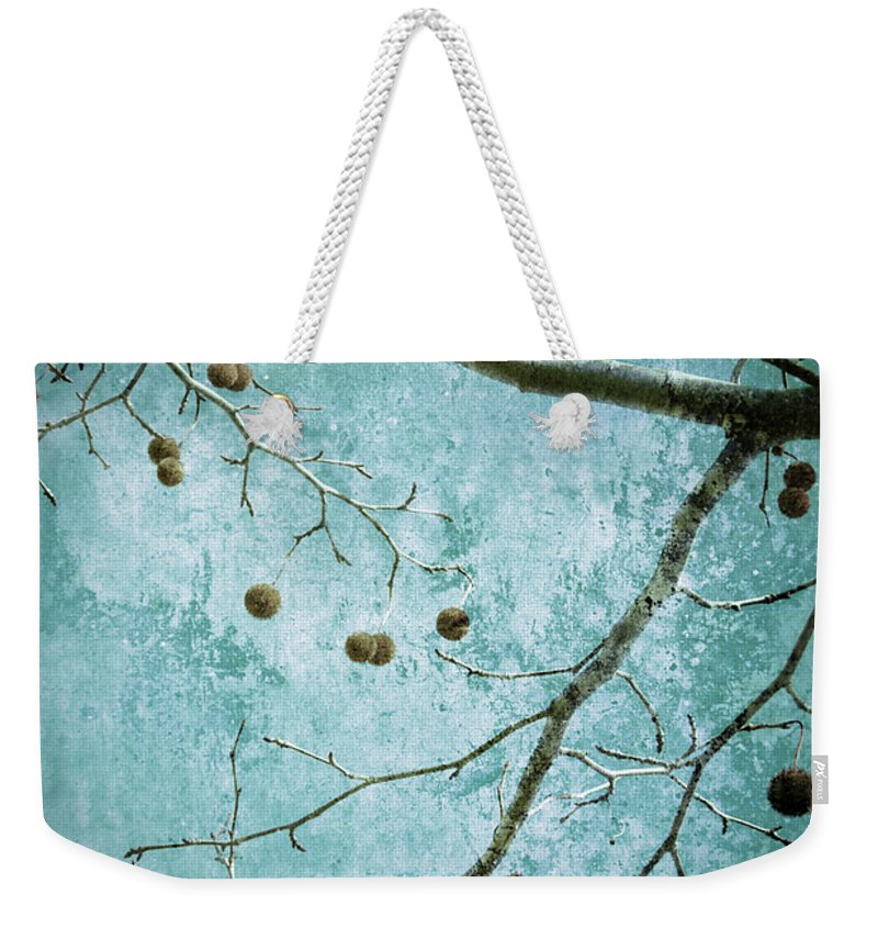 Branches Weekender Tote Bag featuring the photograph Branched by Tara Turner