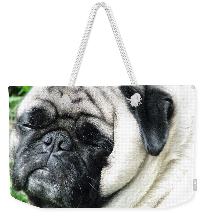 Patzer Weekender Tote Bag featuring the photograph Mug Zee by Greg Patzer