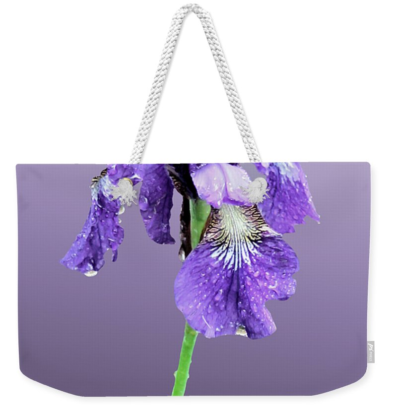 Russian Iris Weekender Tote Bag featuring the photograph Wet Russian Iris by Kristin Elmquist
