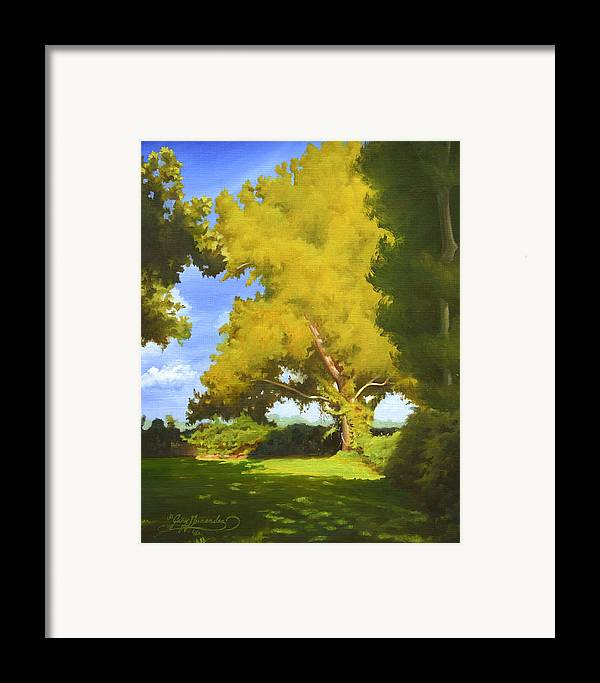 Sycamore Tree Framed Print featuring the painting Sycamore by Gary Hernandez