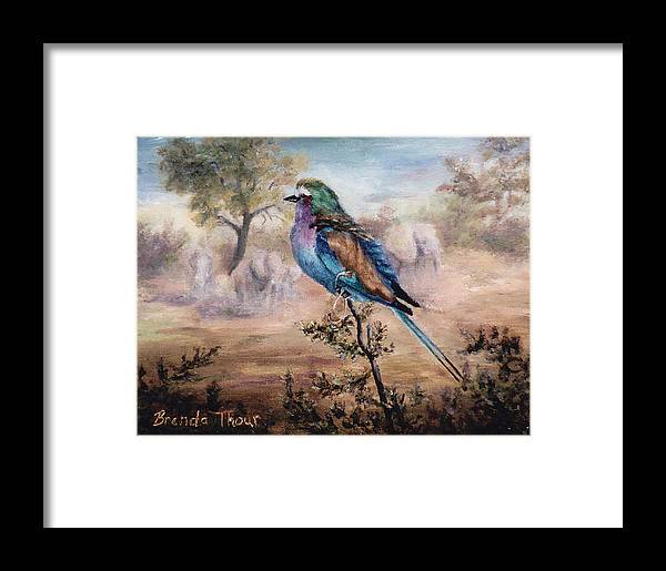 Bird Framed Print featuring the painting African Roller by Brenda Thour