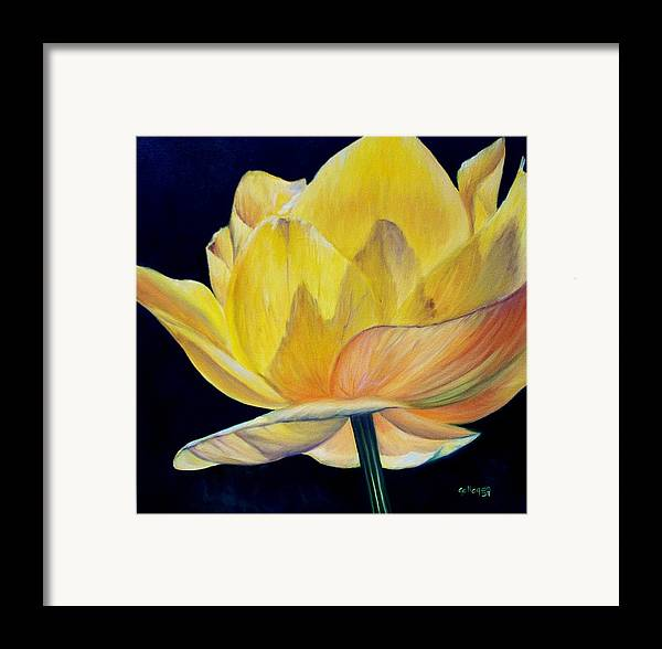 Flower Framed Print featuring the painting Amarella by Elsa Gallegos