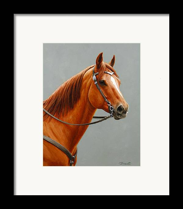 Horse Framed Print featuring the painting Chestnut Dun Horse Painting by Crista Forest