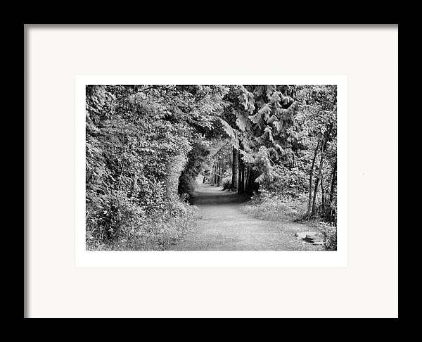Tunnel Framed Print featuring the photograph Forest Tunnel by J D Banks