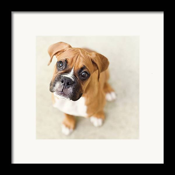 Square Framed Print featuring the photograph Innocence by Jody Trappe Photography