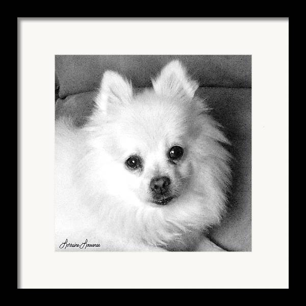 Photography Framed Print featuring the photograph Juliet by Lorraine Louwerse