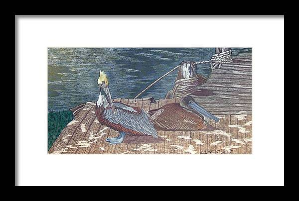 Pelican Framed Print featuring the painting Playing Hard-to-get by Anita Putman