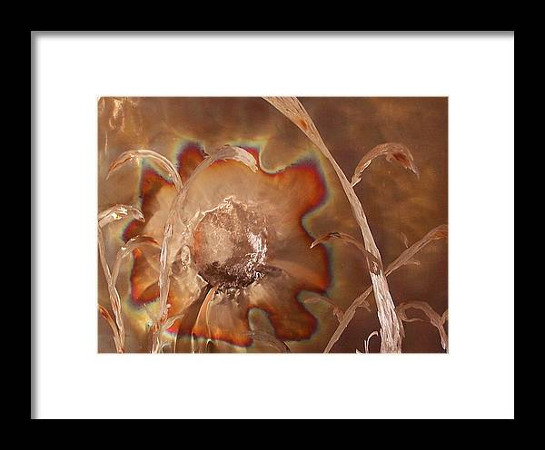 Framed Print featuring the sculpture Sunny by Jeff Williams
