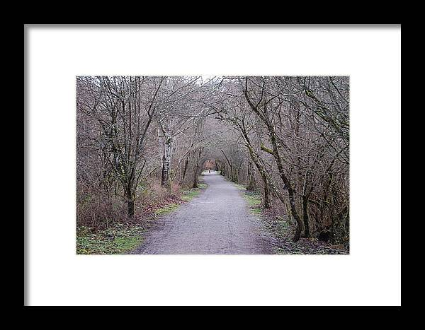 Nature Framed Print featuring the photograph Trail Tunnel by J D Banks