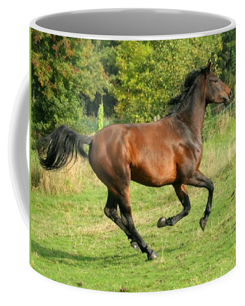 Horse Coffee Mug featuring the photograph Gallop by Angel Ciesniarska