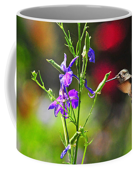 Hummers Coffee Mug featuring the photograph Springtime Hummer by Lynn Bauer