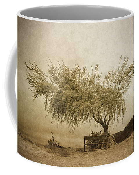 Tree Coffee Mug featuring the photograph A Sky The Colour Of Memory by Tara Turner