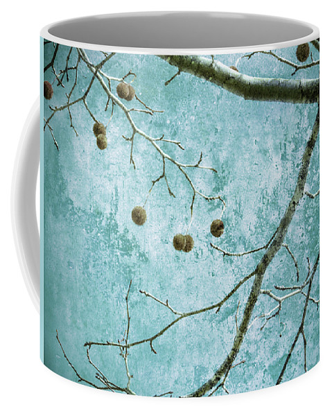 Branches Coffee Mug featuring the photograph Branched by Tara Turner