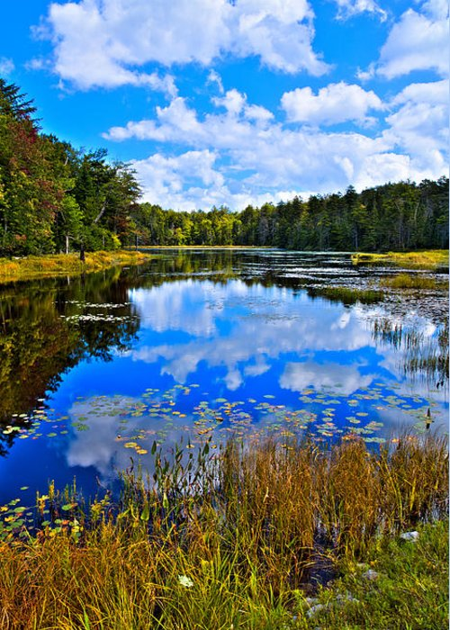 Fly Pond Greeting Card featuring the photograph Early Autumn At Fly Pond - Old Forge Ny by David Patterson