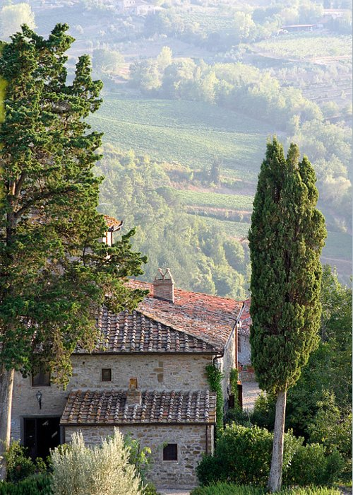 Italy Greeting Card featuring the photograph Tuscan Farmhouse At Villa Vignamaggio by Mathew Lodge