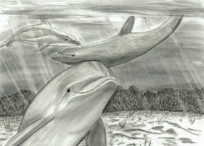 Dolphin Greeting Card featuring the digital art 3 Dolphins Playing In Shallow Ocean Water by Joshua Hullender