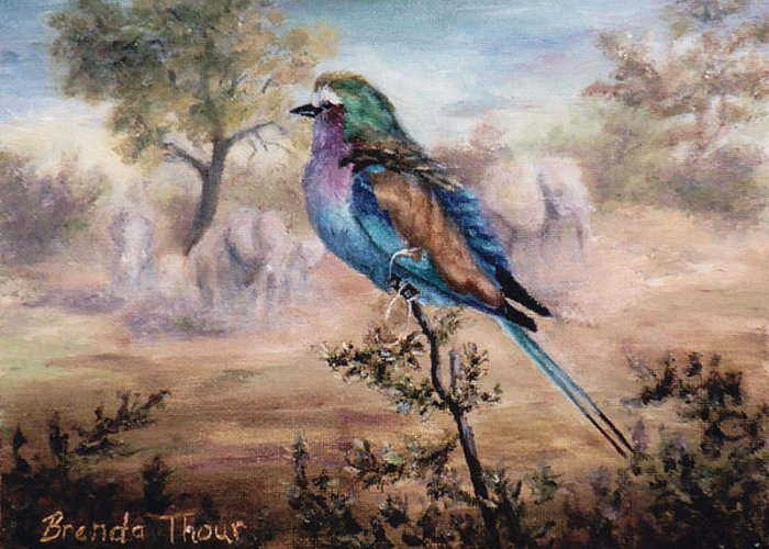 Bird Greeting Card featuring the painting African Roller by Brenda Thour