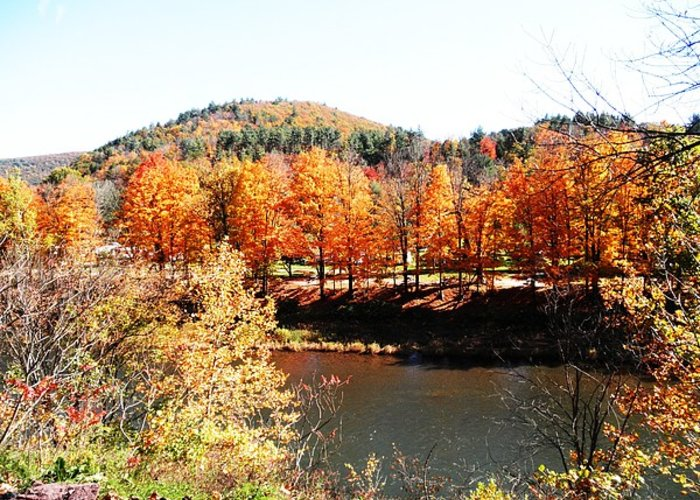 Trees Greeting Card featuring the photograph Autumn By The River by Jeanette Oberholtzer