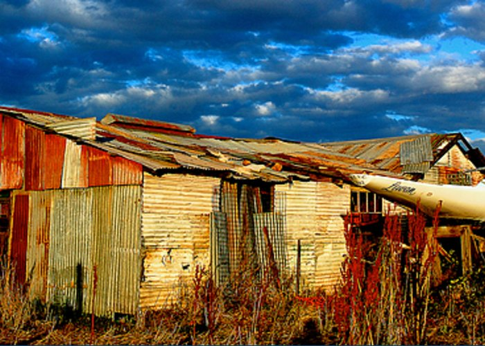 Yard Greeting Card featuring the photograph Backyard Australia by Tim Nichols