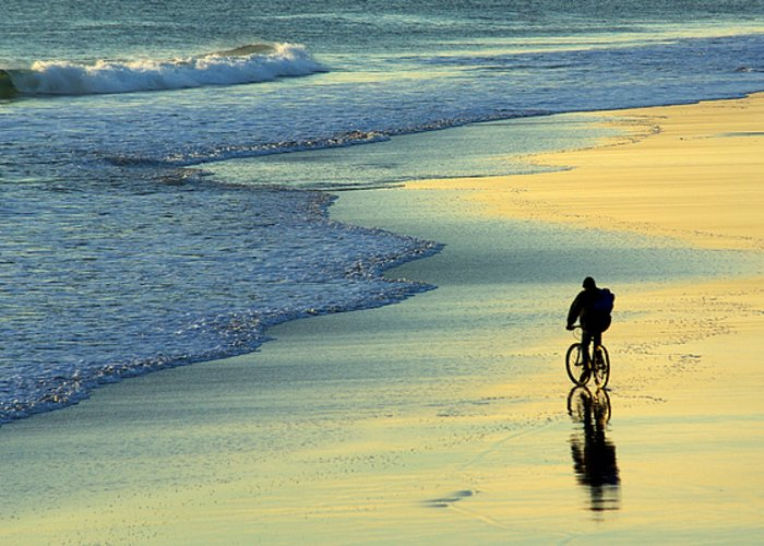 Active Greeting Card featuring the photograph Beach Biker by Carlos Caetano