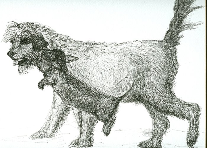 Dogs Greeting Card featuring the drawing Best Friends by Laura Johnson
