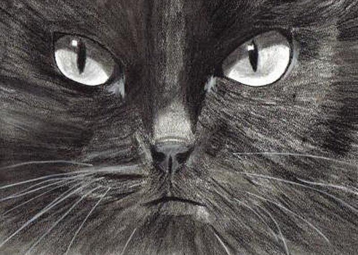 Cat Greeting Card featuring the digital art Black Cat Charcoal Drawing by Joshua Hullender