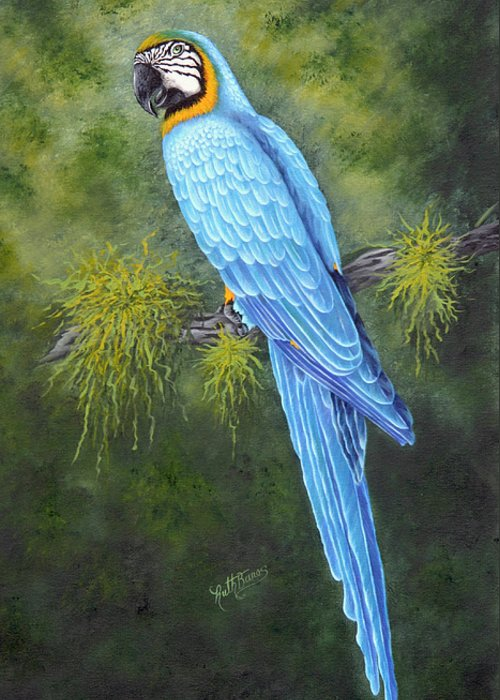 Bird Greeting Card featuring the painting Buddy by Ruth Bares