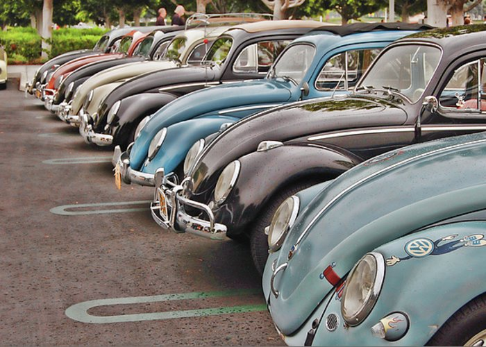 Vw Greeting Card featuring the photograph Bugs by Bill Dutting