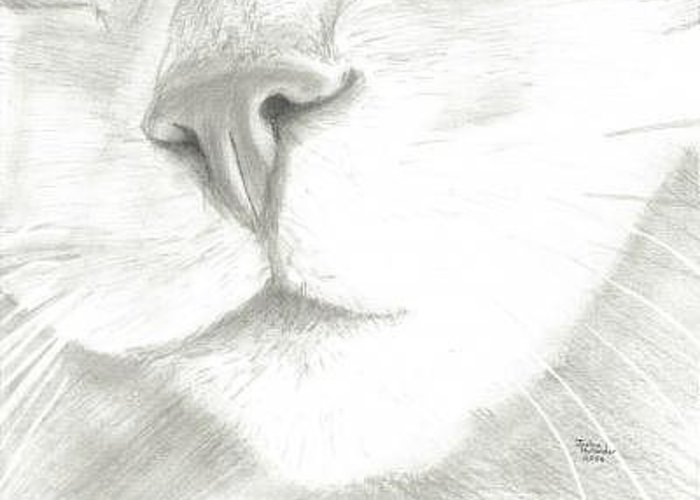 Closeup Greeting Card featuring the digital art Cat Nose by Joshua Hullender