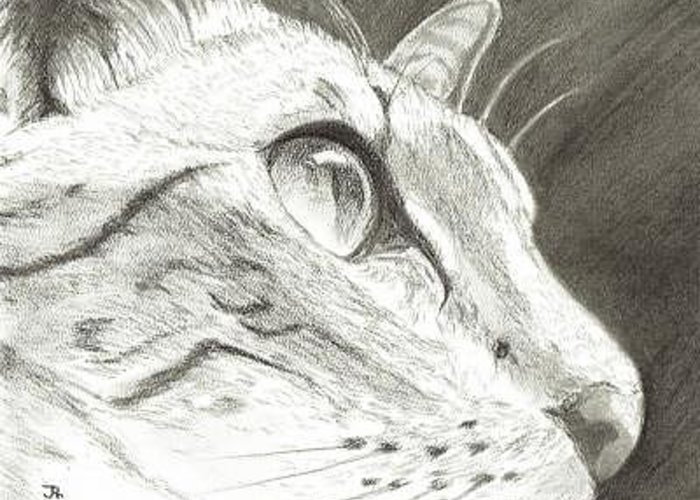 Cat Greeting Card featuring the digital art Cat Side Profile by Joshua Hullender